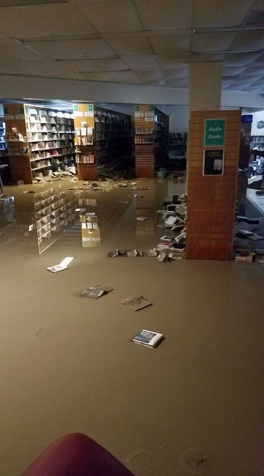 BldB flood
